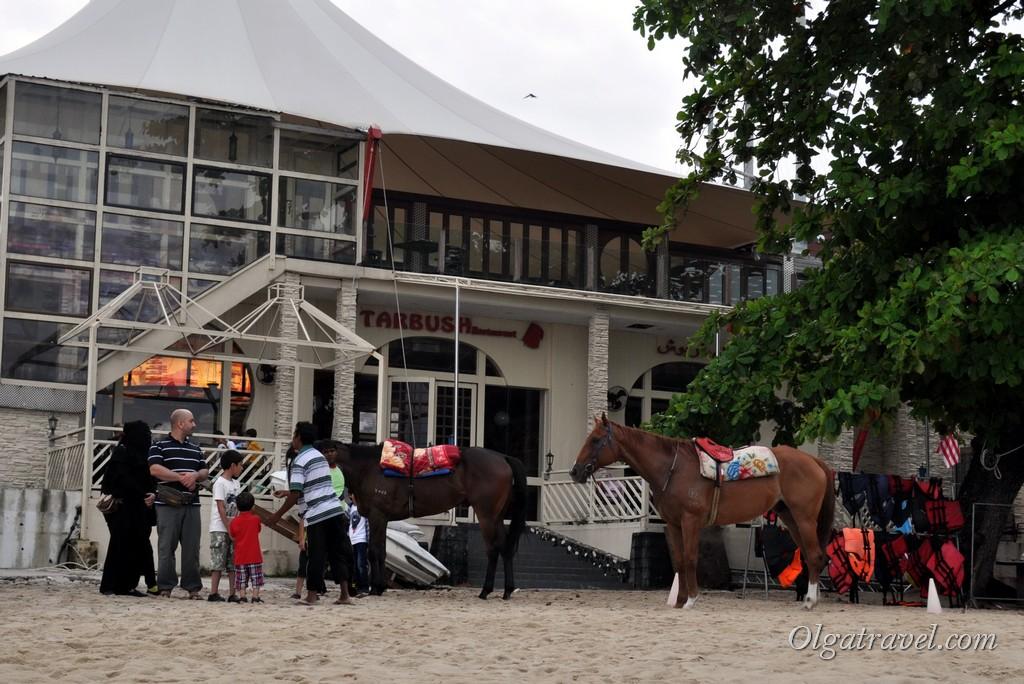 Можно покататься и на лошадях прямо по пляжу!