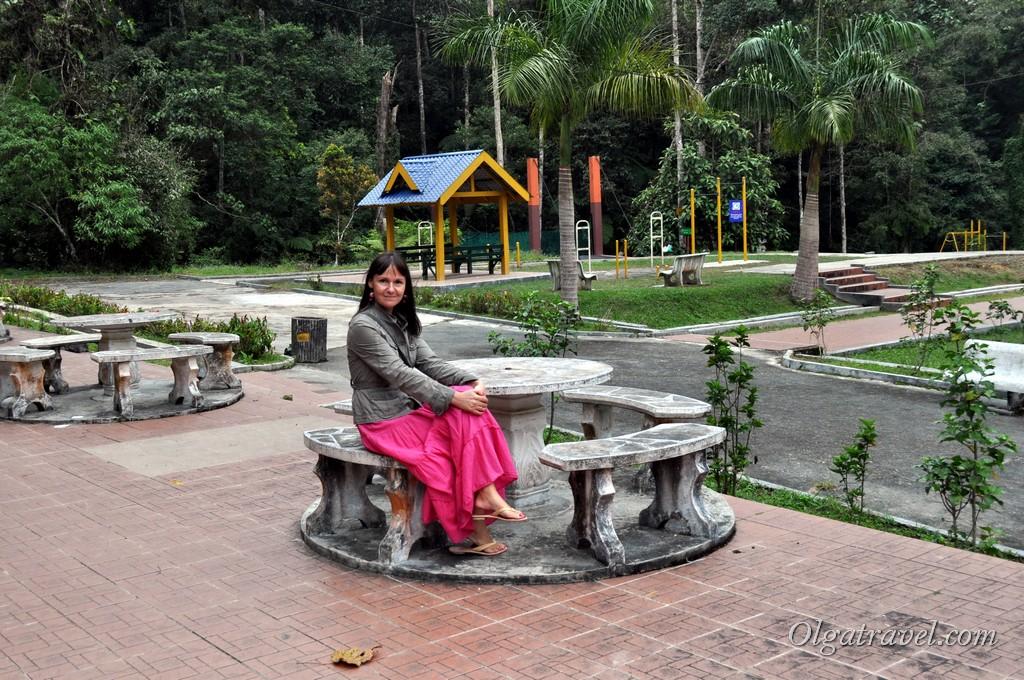 Малайзия Нагорье Камерон