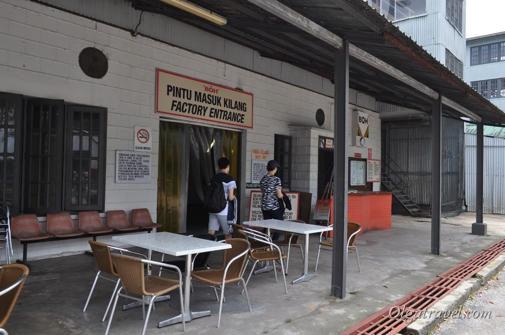 Камерон Хайлендс фабрика чая