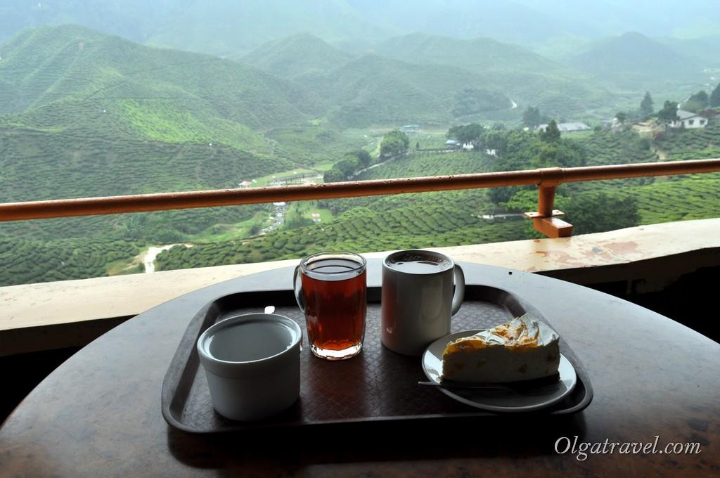 cameron_highlands_tea_plantation_16
