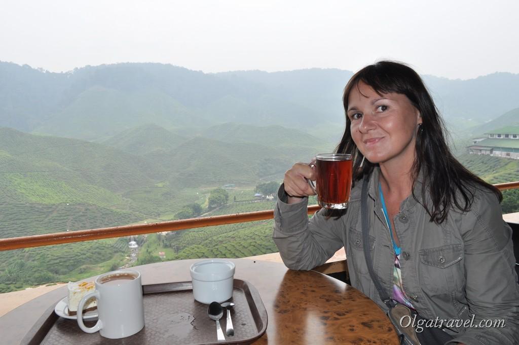 cameron_highlands_tea_plantation_17