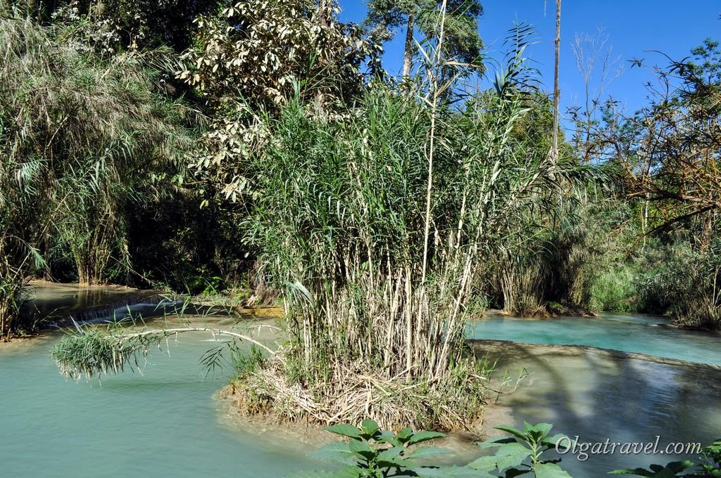Laos_kuang_si_waterfall_28