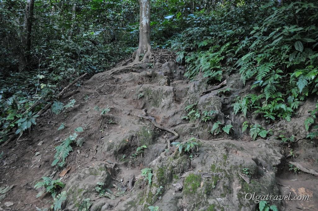 Луанг Прабанг водопад