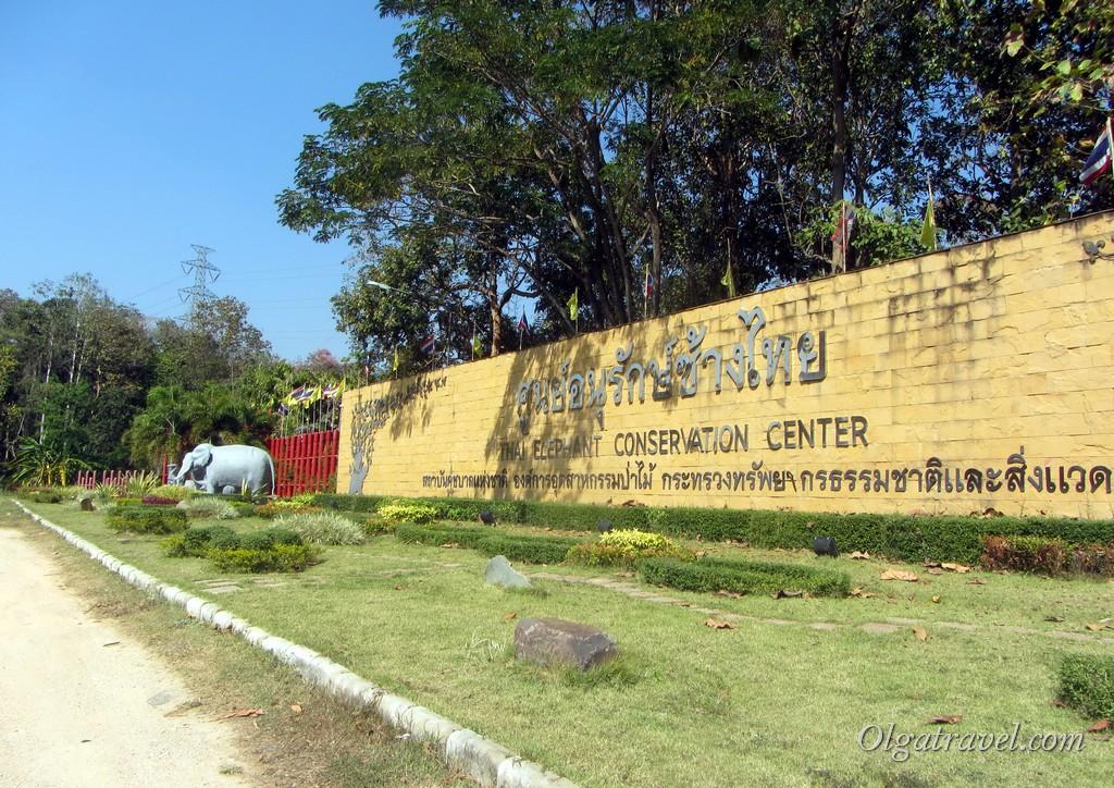 центр охраны слонов