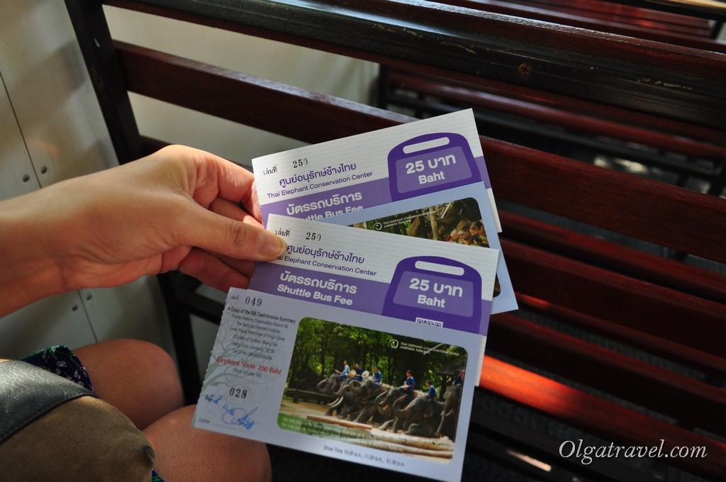 Купили билеты на автобус и на шоу слонов