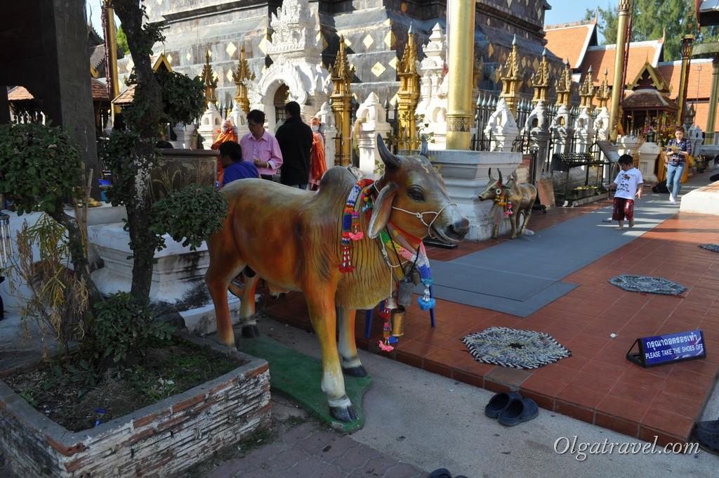 Wat_Phra_That_Lampang_Luang_11
