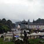 Малайзия, нагорье Камерон Хайлендс (Cameron Highlands): полезная информация, как добраться, где жить, отели, еда, кафе и цены