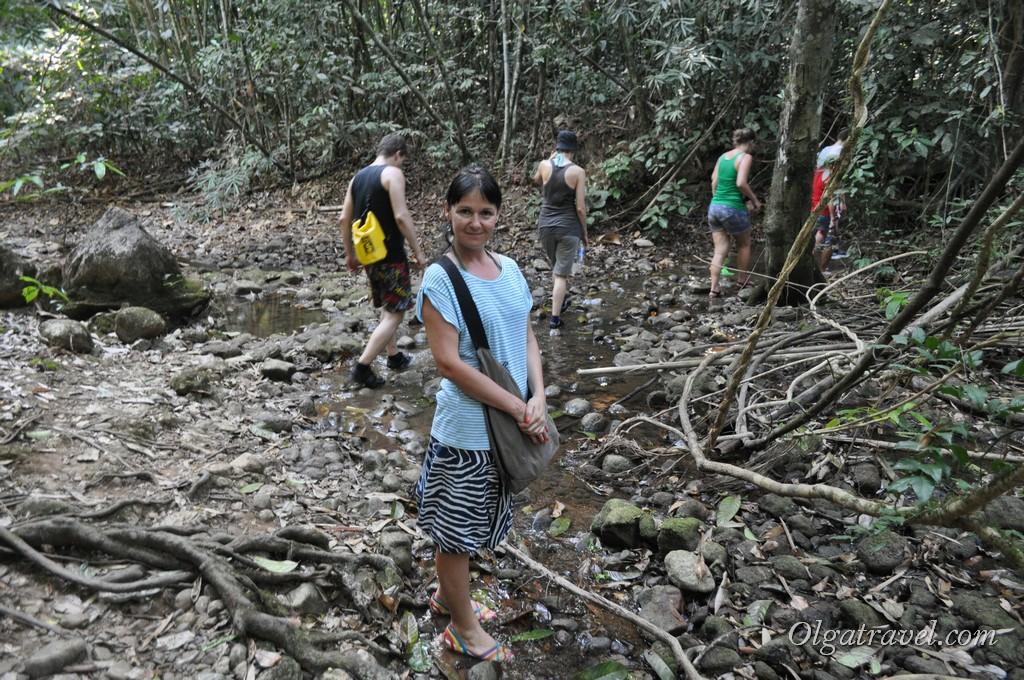 Чео Лан джунгли