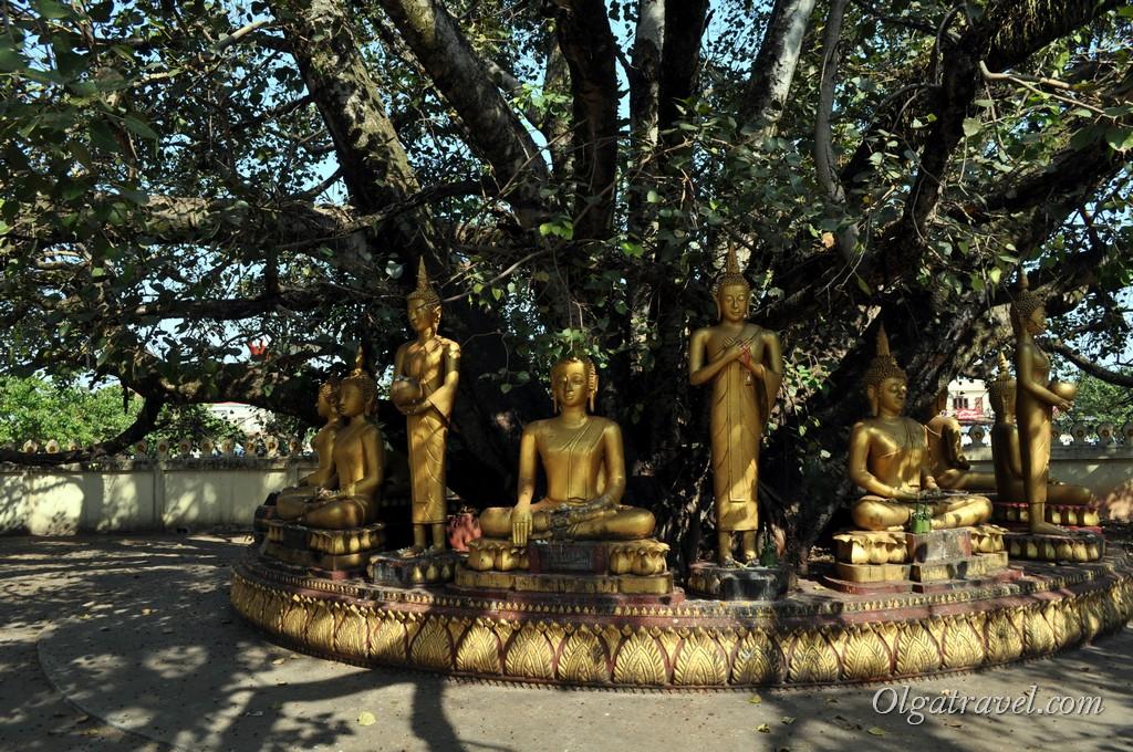 Пха Тхат Луанг