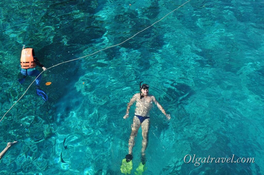 симиланы подводный мир