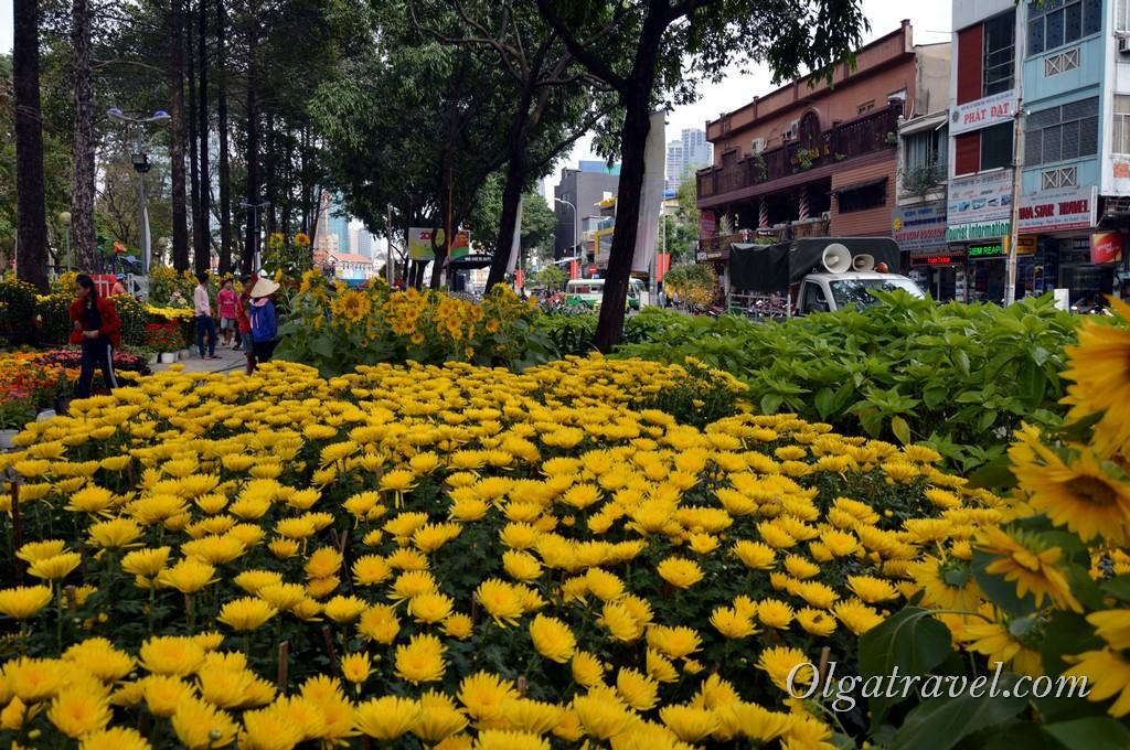 Vietnam_Hochiminh_Tet_2