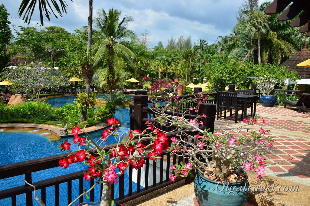 Phuket-hot-spring-resort-20
