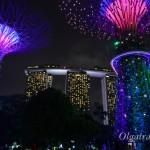 Сады у залива в Сингапуре – одна из любимых достопримечательностей у туристов
