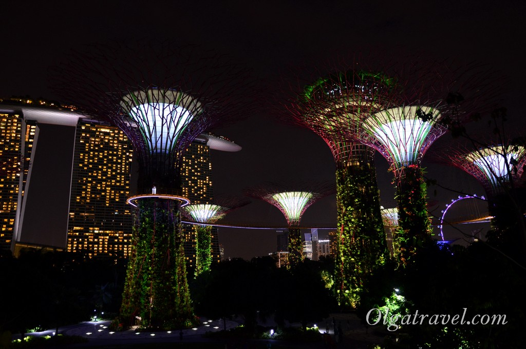 Singapore_gardens_by_the_bay_14