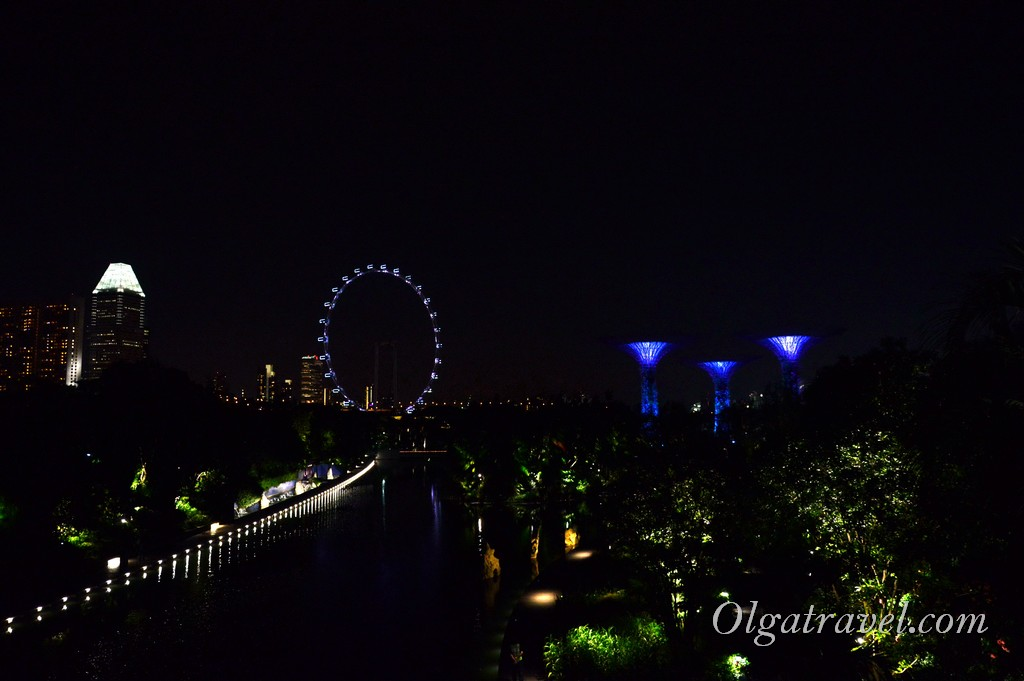 Singapore_gardens_by_the_bay_16