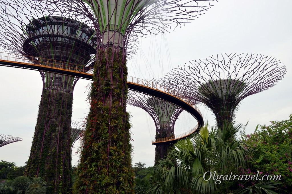 супер деревья сингапур