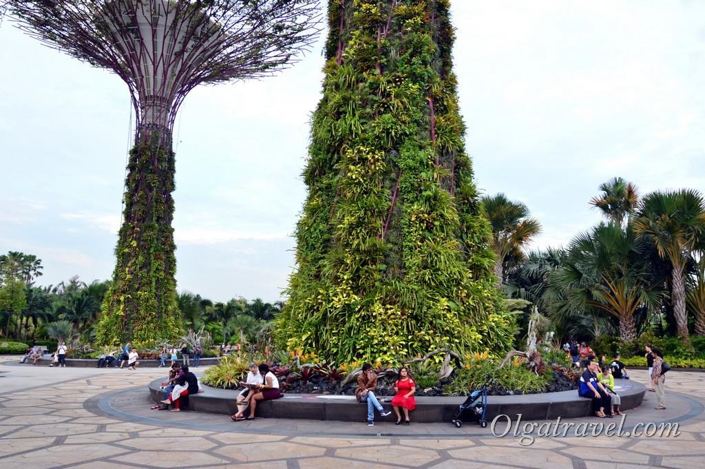 футуристические деревья сингапур
