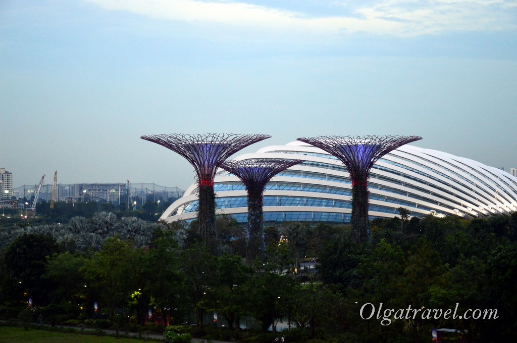 Singapore_gardens_by_the_bay_53