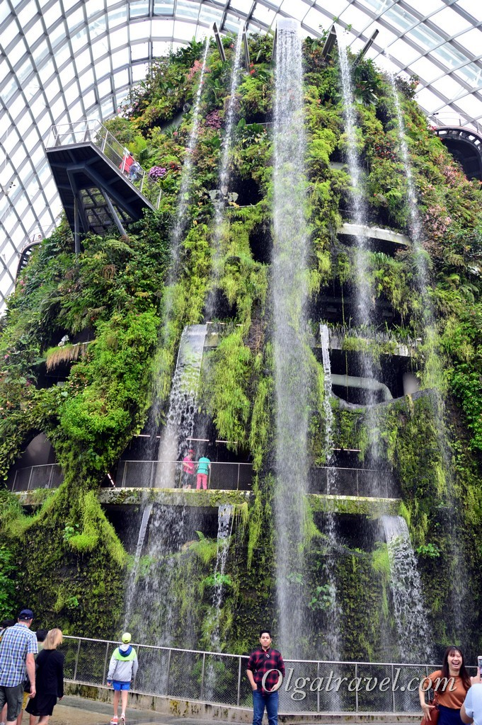 Cloud Forest в Сингапуре