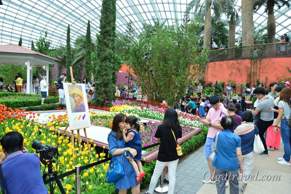 Flower Dome в Сингапуре