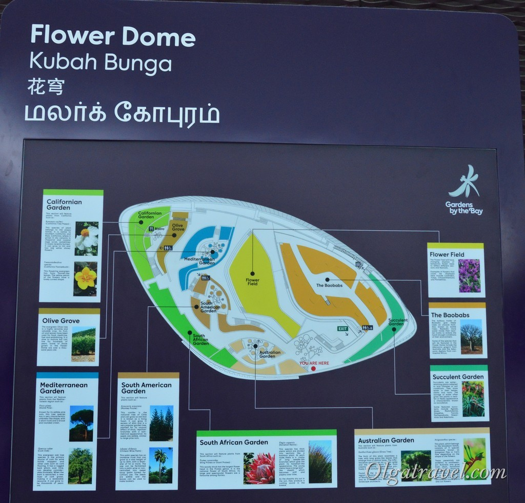 Flower Dome Сингапур