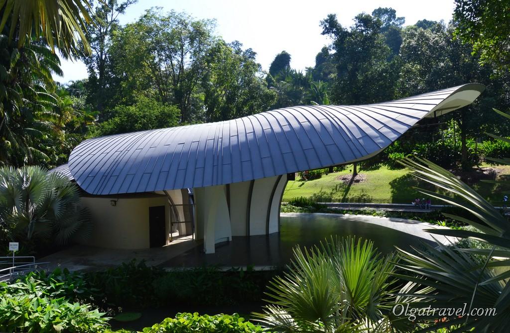ботанический сад сингапура