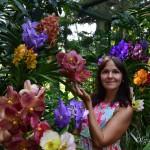 Ботанический сад Сингапура и национальный сад орхидей