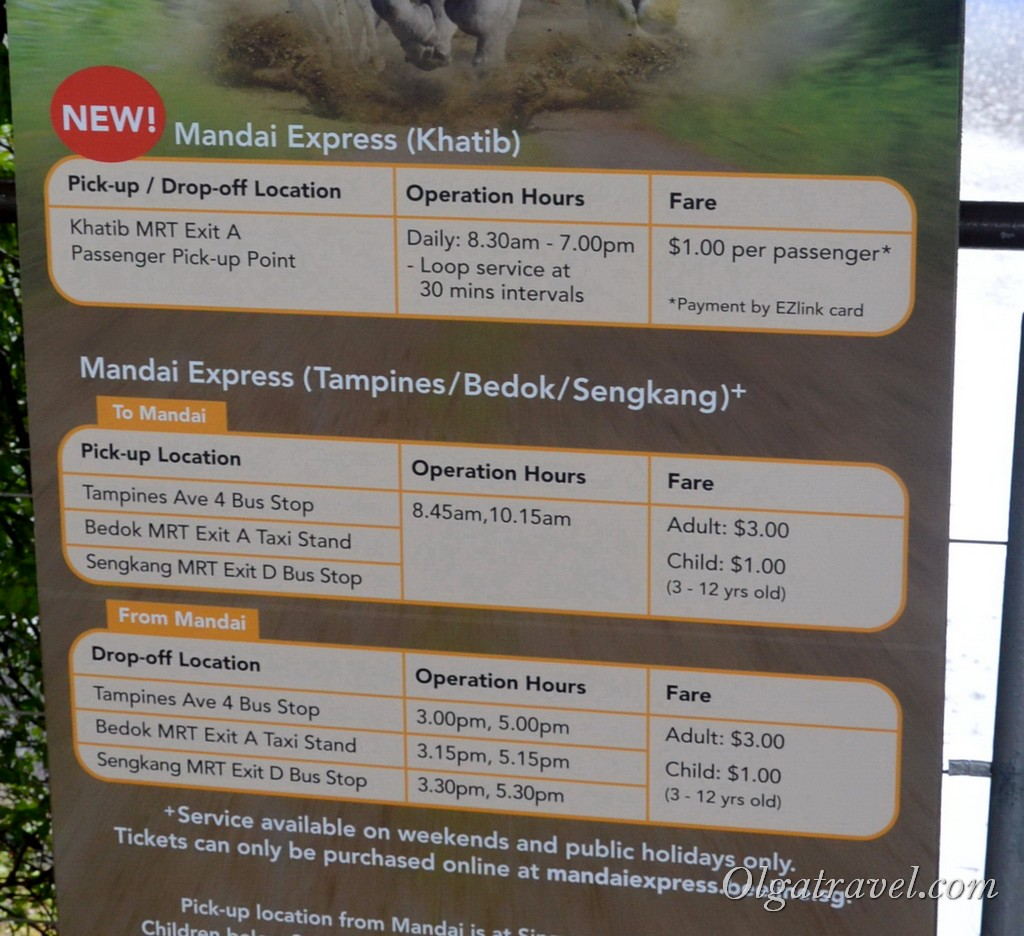 зоопарк в сингапуре как добраться