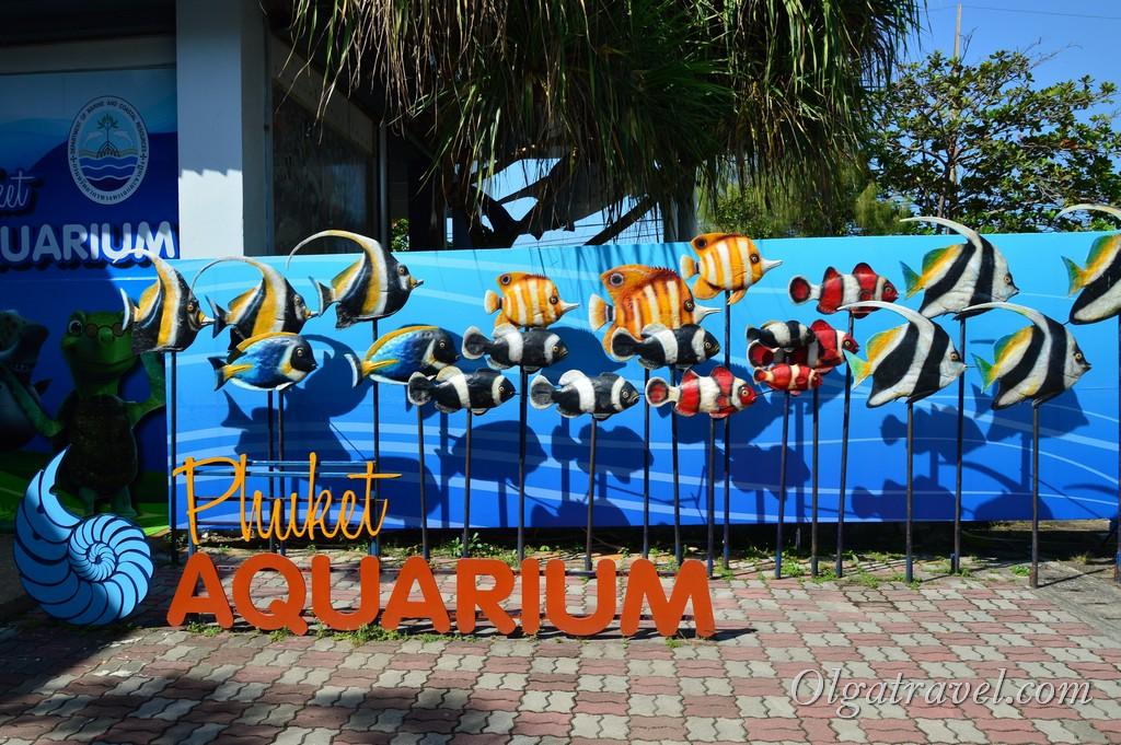 аквариум пхукет