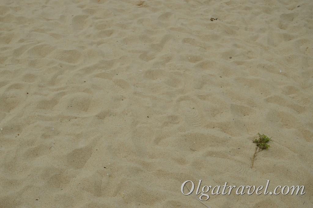 пляж Найхарн отзыв